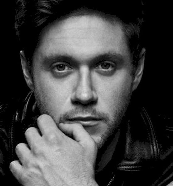 """Niall Horan, ex-One Direction, lança o novo single e clipe de """"Nice To Meet Ya"""""""