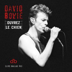 David Bowie: álbum ao vivo gravado em 1995 será lançado em julho