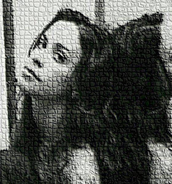 Alanis Morissette revela em documentário que foi estuprada varias vezes